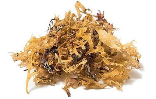 irish seamoss, irish moss, where can i get irish moss in the UK, irish moss by a black-owned business