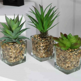 BTMR – Set of 3 Faux Succulents in glass jar