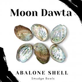 Abalone Shell Smudge Bowls