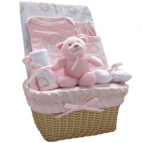 9 Piece Newborn Gift Set in Hamper (Pink)