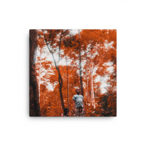 "Photo Print Canvas – ""Obourba"""