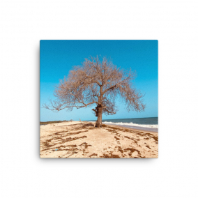 """Photo Print Canvas – """"The Last Stand"""""""